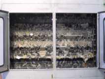 Belegtes Filterband